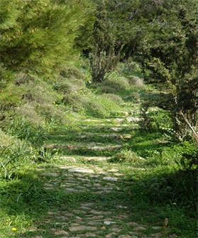 Old Footpath at Kefalos hill, Paros