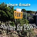 shelter for paws